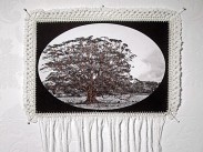 Dialogue With a Dream 11, 2009, Photography, Cotton, Crochet, Embroidery, Metallic Threads,, 85 x 53 cm